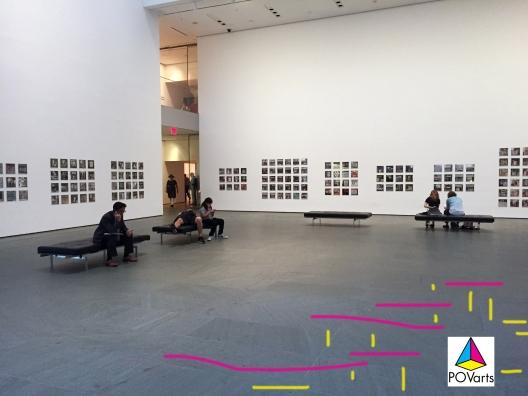Zoe Leonard Install MoMA