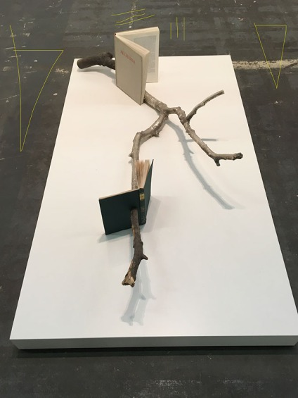"""Alicja Kwade, """"Wandel durch Inhalt (Das Phanomen des Geistes in Kunst und Wissenschaft)"""""""