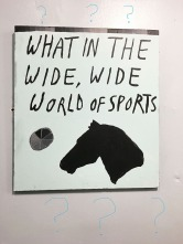 "Polly Schindler, ""What in the Wide, Wide World of Sports"""