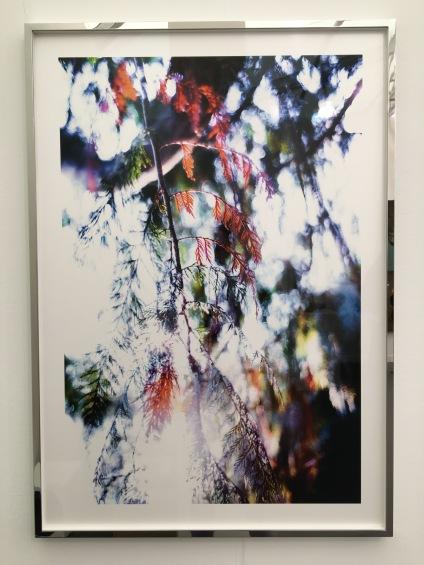 Taka Ishii Gallery